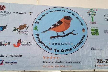 3rd Meeting of Coordinators of the Urban Birds Program for Mexico
