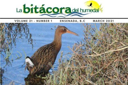 Bitácora del Humedal-V21N1-English